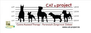 CATproject